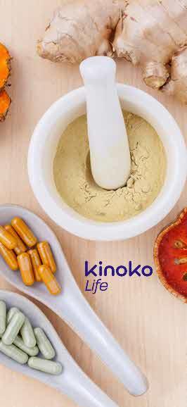 Kinoko life Banner
